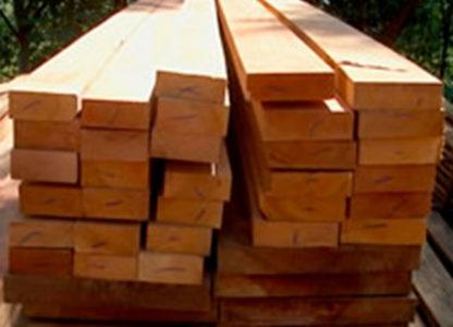 Caibro-de-Pinus-Tratado-2